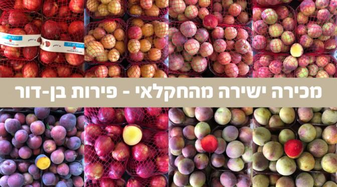 פירות-בן-דור-יסוד-המעלה